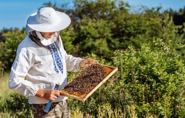 Пчеловод осматривает соты на пасеке в летний день. человек, работающий на пасеке. пчеловодство. концепция пчеловодства.