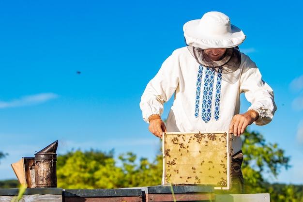 Пчеловод осматривает раму сот на пасеке в летний день.