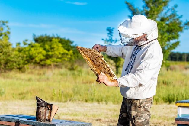 Пчеловод работает с пчелами и ульями на пасеке. пчелы на сотах. рамки пчелиного улья