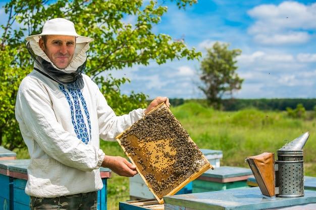 Пчеловод работает с пчелами и ульями на пасеке. пчелы на сотах