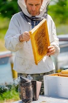 Пчеловод работает с пчелами и ульями на пасеке.