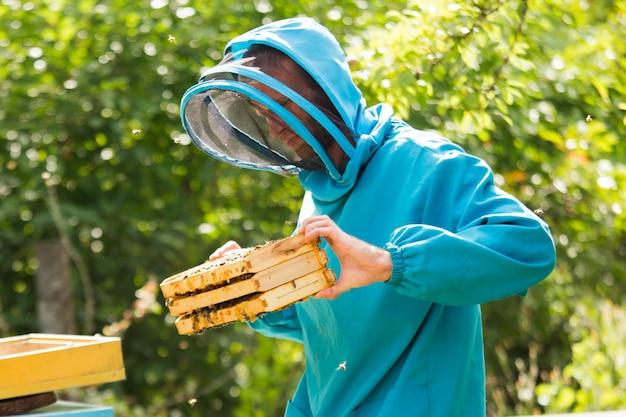 양봉가가 벌통에서 프레임 3 개를 꺼냅니다. 꿀벌 가족의 프레임 교체.
