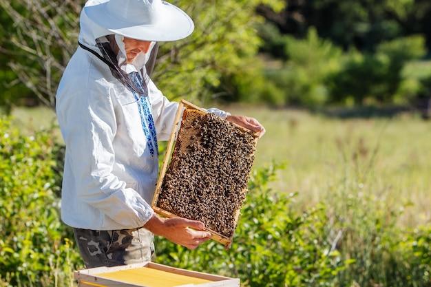 Пчеловод за работой собирает мед. концепция пчеловодства
