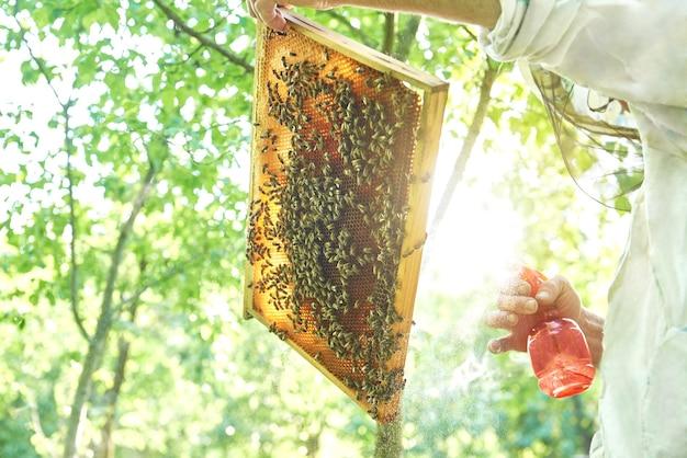 Пчеловод работает на своей пасеке с сотовой рамой