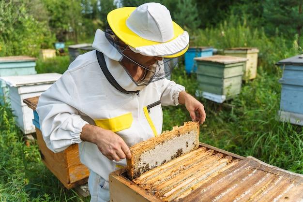 Пчеловод работает с пчелами на пасеке