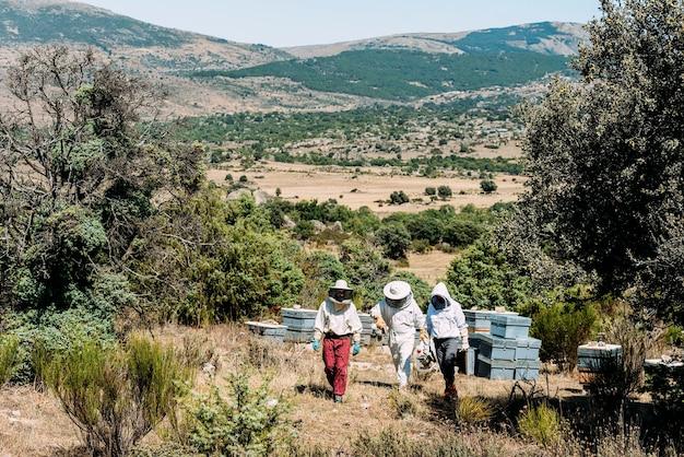 일하는 양봉가는 꿀을 수집합니다. 양봉 개념.