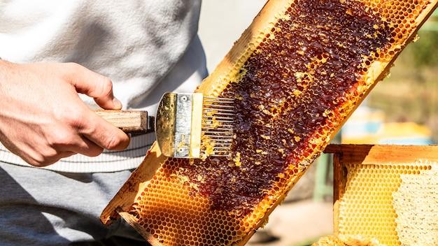 Концепция пчеловодства, инструменты пчеловодства