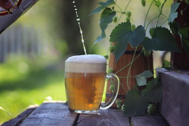 맥주 유리 나무 홉 야외
