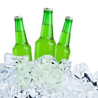 맥주는 얼음에