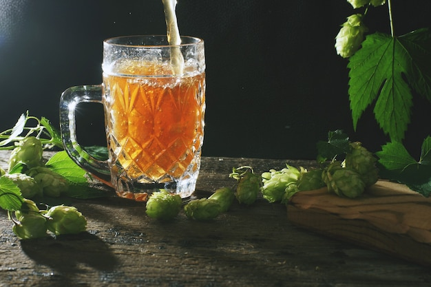 Beer is poured into a large glass mug, black background and hop plants nearby.