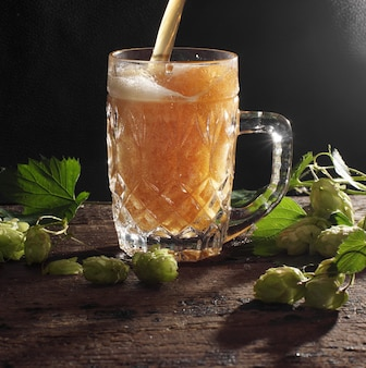 Beer is pouring into a glass mug, black background and hop plants nearby.