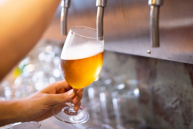 Beer tap in bar and cold refreshment for adult alcohol after work