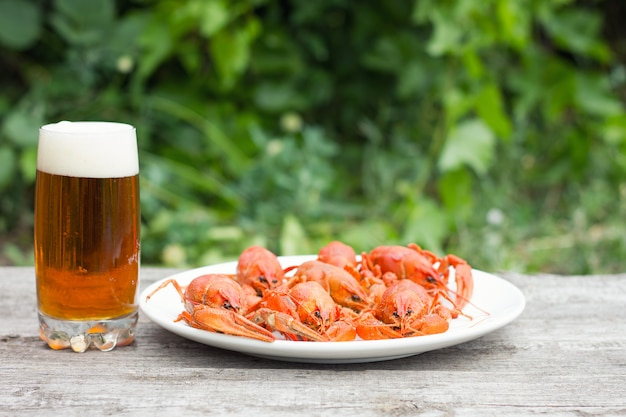 Beer with crayfish on wooden background, snack for rest