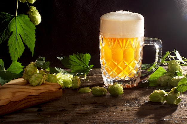 Beer with foam is poured in a glass mug, black background and hop plants nearby.