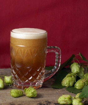 Beer with foam is poured into a large glass mug, red background and hop plants nearby.