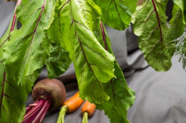 Верхушки свеклы заделывают. свекла и морковь со стеблями. серый фон ткани. вид сверху
