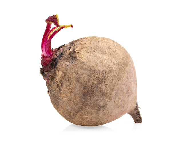 Beetroot isolated on white surface