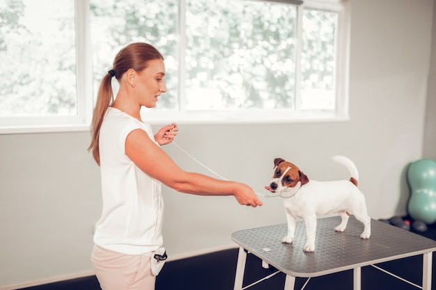 試験前。検査の前に犬と話すプロのブロンドの髪の獣医