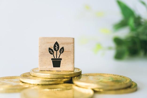 鍋の植物は、ゴールドコイン、電卓、ミニホームモデルbehide白いきれいな壁などのオブジェクトを持つ木製の立方体にアイコンサインを育てます。お金を投資する成長ビジネス金融..