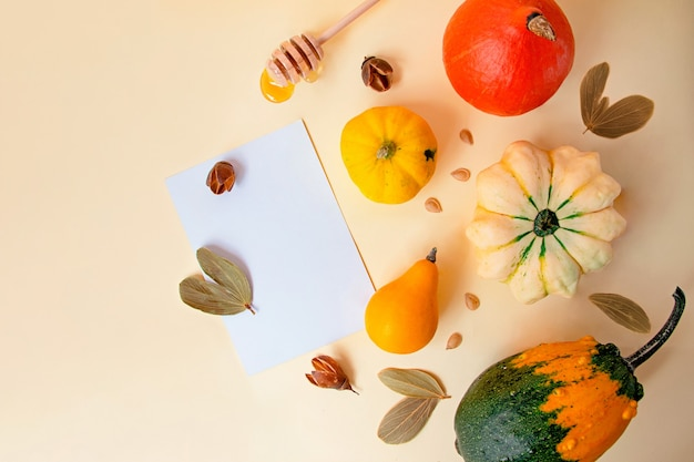 さまざまな種類のカボチャが描かれたベージュの背景乾燥した秋の葉と種子の近く