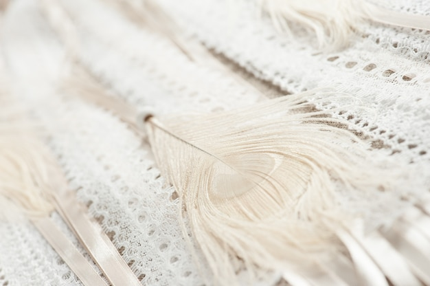 Beige feather and laces