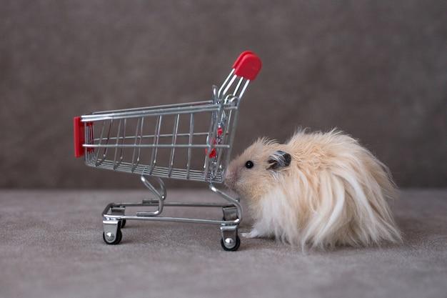 Бежевый хомяк рядом с пустой тележкой для покупок на коричневом фоне