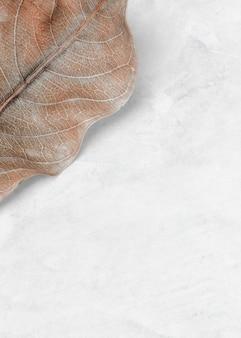 Spazio di progettazione di sfondo con motivo a foglia beige