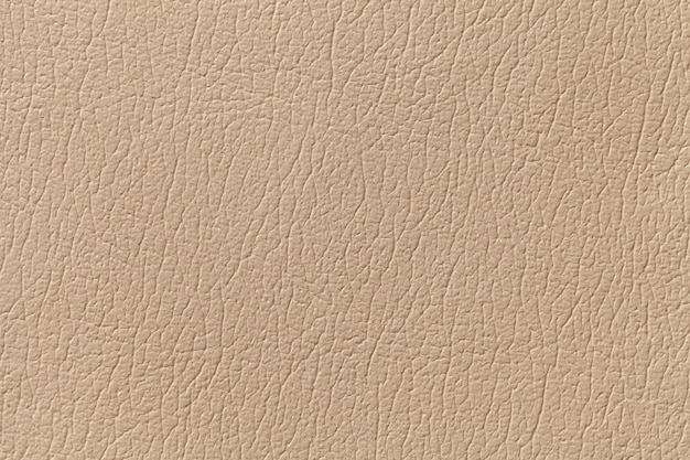 Beige leather texture background with pattern, closeup