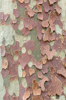 Beige with brown and green texture background
