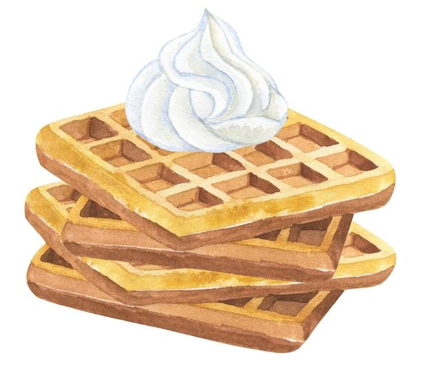 ホイップクリームとベルギーワッフル。手描きの水彩イラスト。孤立。