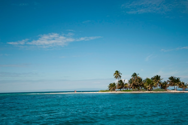 Belize barrier reef, laughing bird caye