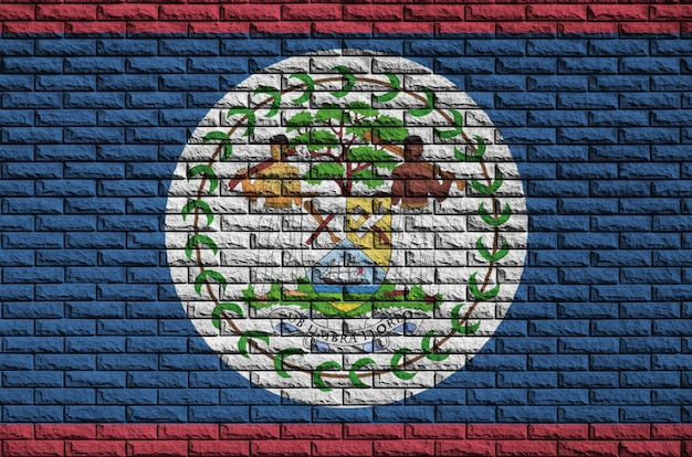 Belize flag is painted onto an old brick wall