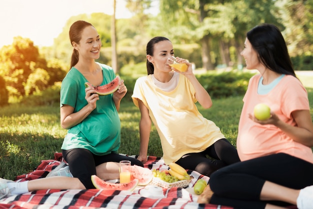 Belly women talk in park. pregnant women picnic.
