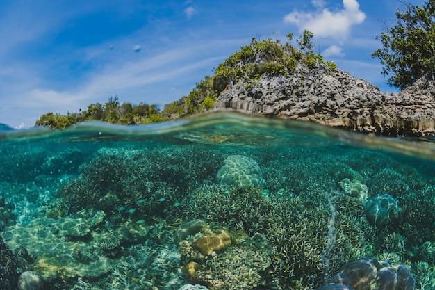 섬의 표면 아래