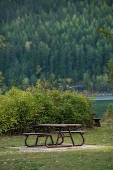 森林公園の湖の横にあるベンチ