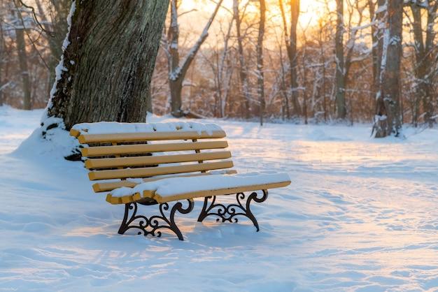 Скамейка, покрытая снегом в парке на закате зимой. солнечный и холодный вечер в парке.