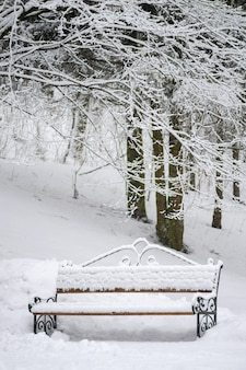 Bench covered with snow at winter park. winter mood scenery