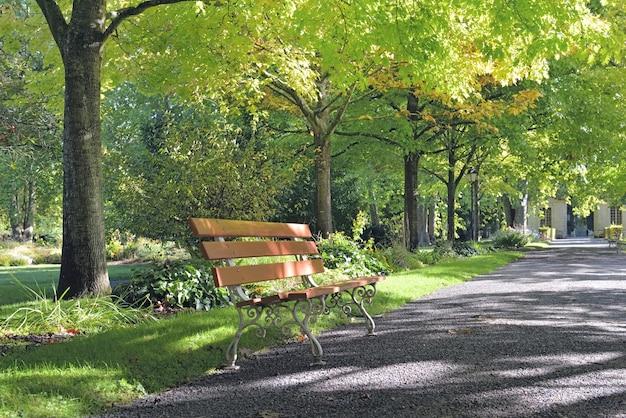 나무의 녹색 단풍으로 borded 아름다운 공원의 골목에있는 벤치