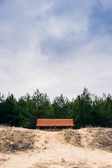 曇った空の下の木々の前のベンチ
