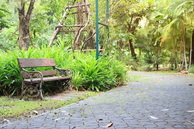 공공 정원 공원에서 벤치