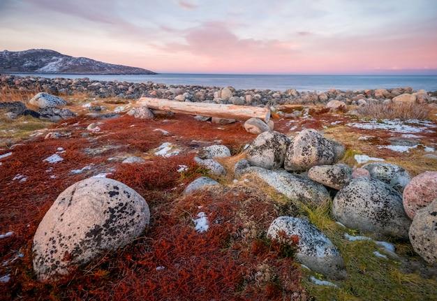 バレンツ海の岸にあるベンチ。北の海のビーチの表面は、さまざまなサイズの灰色の大きな磨かれた丸い石で覆われています。チェベルカ。