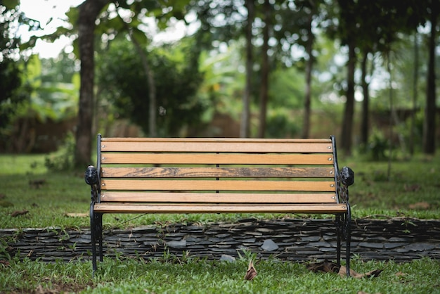 Bench in the park on green background