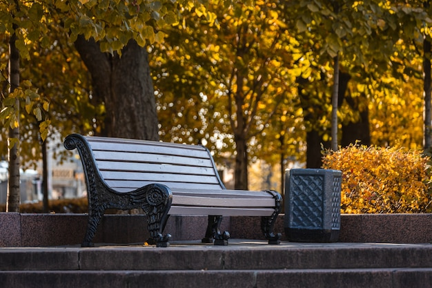 Bench under a tree in the autumn forest. ð¡alm and peaceful park background