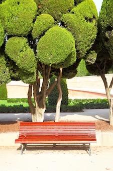 Buen retiro 공원에서 잘린 사이프러스 아래 벤치. 마드리드, 스페인.