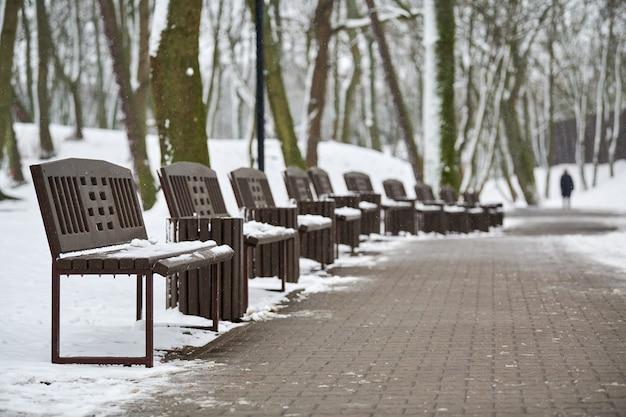 Скамейки, покрытые снегом среди морозных зимних деревьев в парке. зимний пейзаж с падающими снежинками