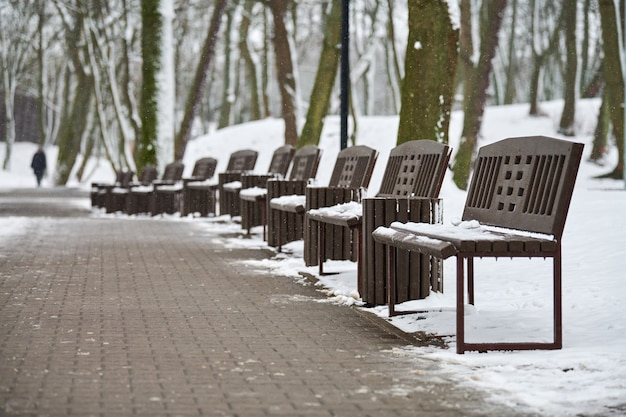 Скамейки, покрытые снегом среди морозных зимних деревьев в парке