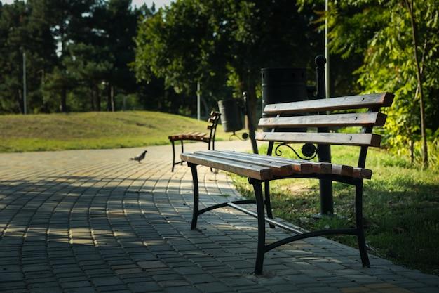 Скамейки в красивом городском парке в яркое солнечное утро