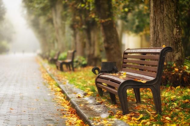 가을 공원 아름다운 풍경 벤치