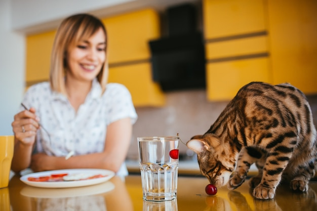 Bengal cat looks at a cherry while it floats in glass with water