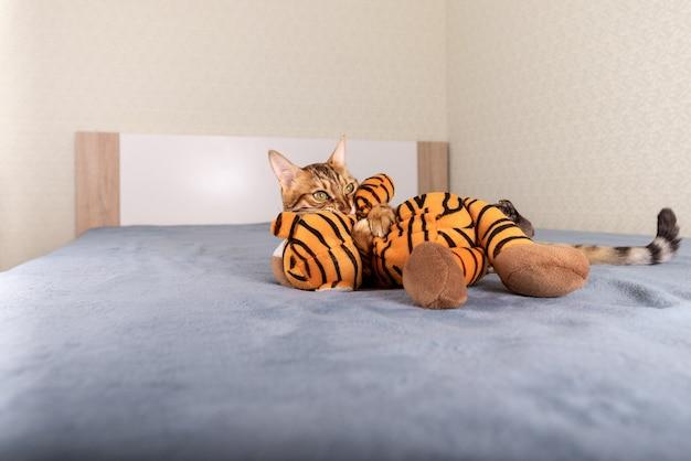 ぬいぐるみでベッドで遊ぶベンガル猫